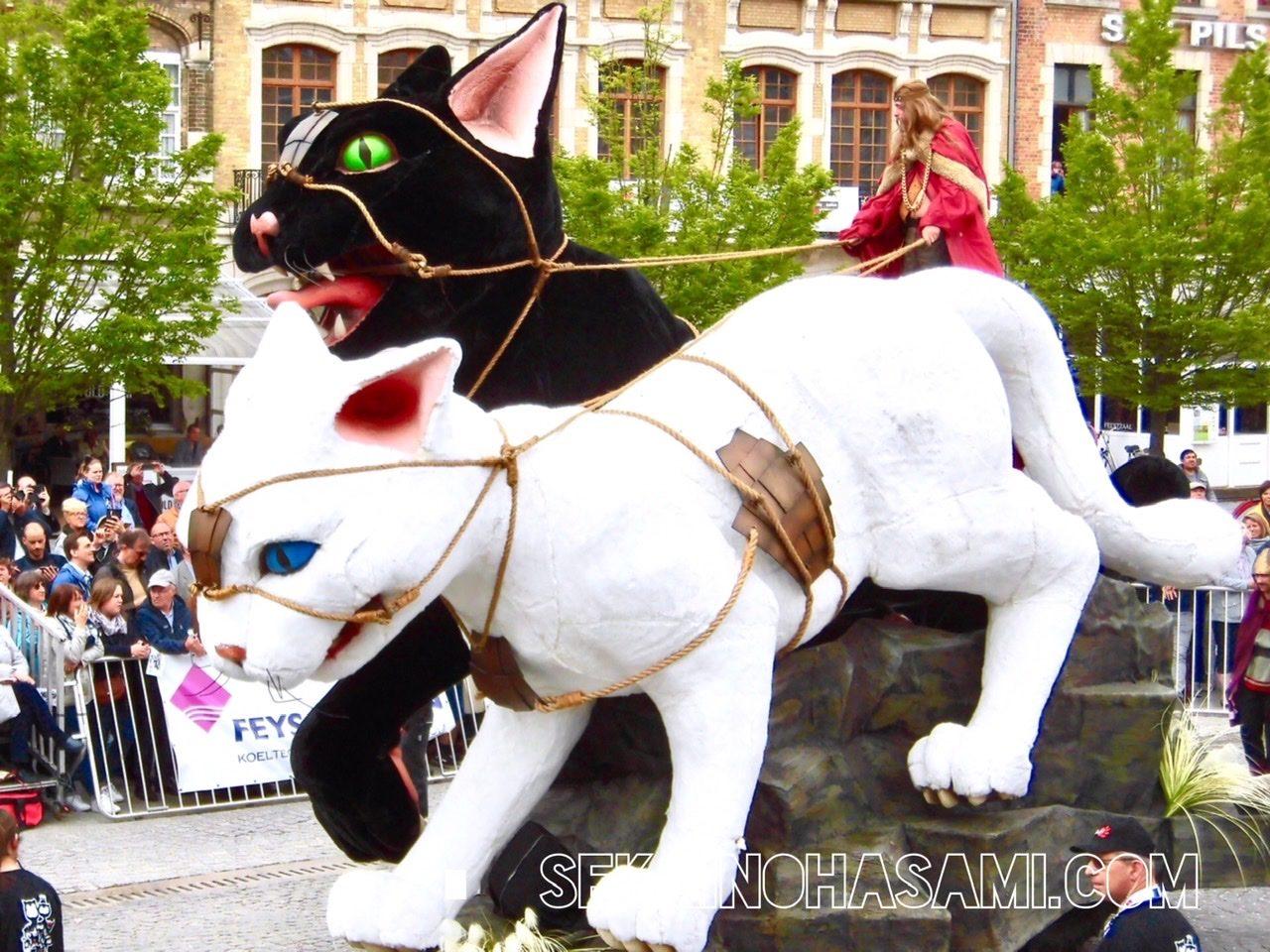 開催は3年に1度!ベルギーに猫好きが集まるイーペルの猫祭り完全ガイド!
